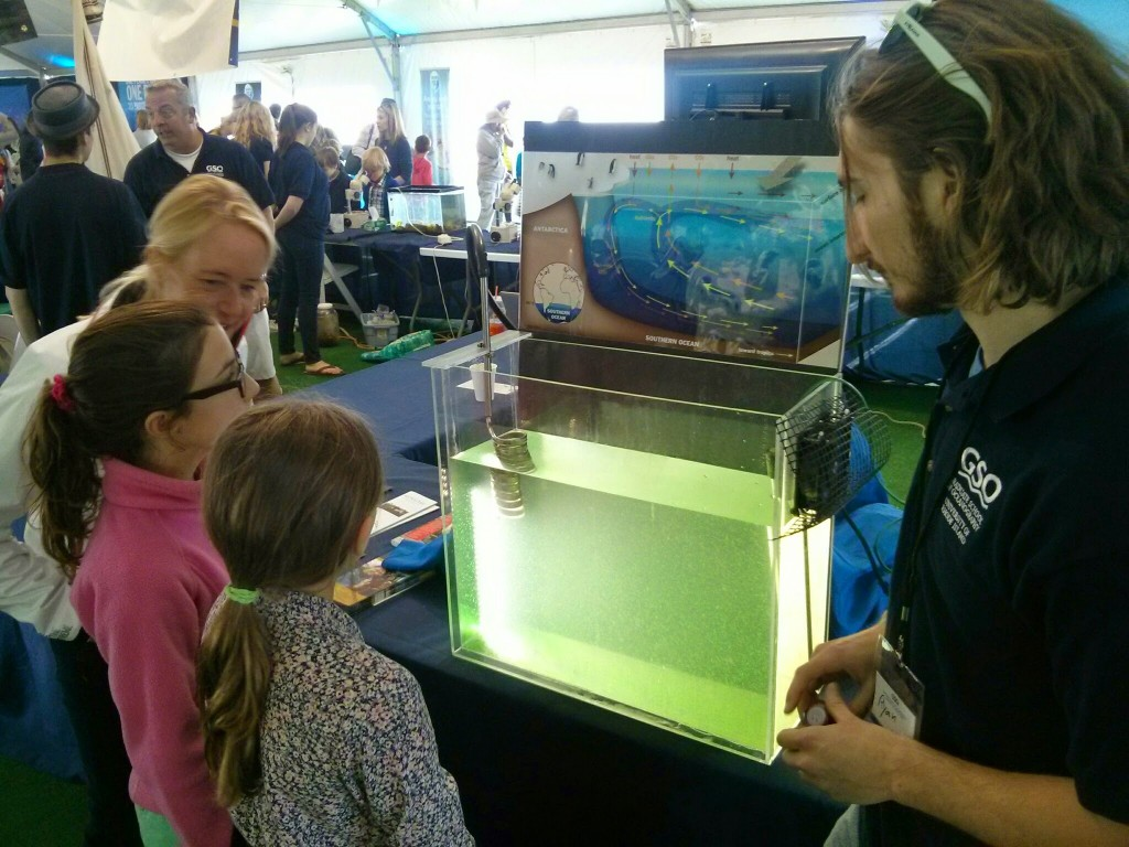 Ryan O'Shea how water becomes dense and sinks near Antarctica to enter the deep ocean.  The tank with green beads illustrates this circulation.
